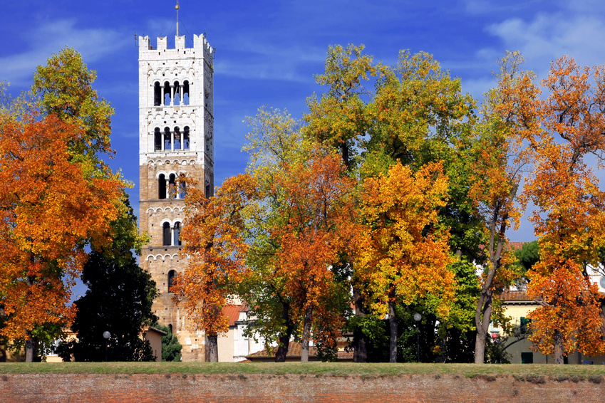 lucca torre